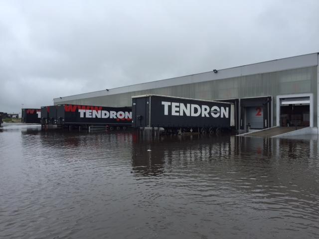 TENDRON 1
